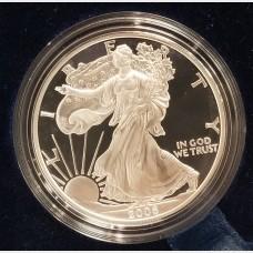 2006 W American Eagle 1 Ounce Bullion Coin $1 Proof US Mint