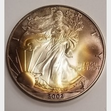 2002 Silver American Eagle Beautiful Toning $1 Nearly Mint State