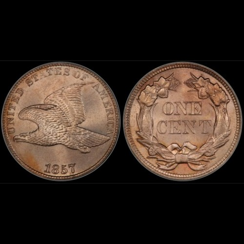 Flying eagle coin