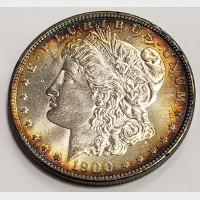1900 Morgan Silver Dollar Peripheral Toning AU