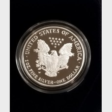 2002-W Silver American Eagle 1 Ounce Proof Bullion Coin